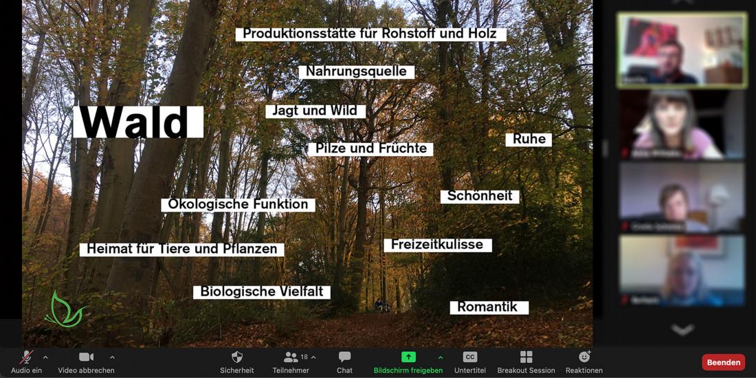 Der Wald als Konfrontationsraum
